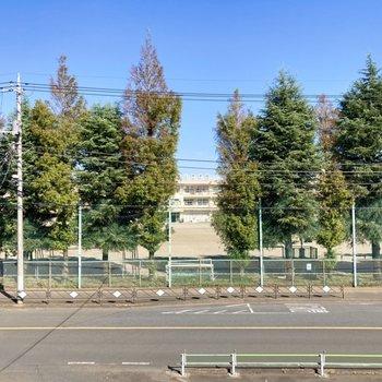 共用部から見える距離に中学校があり、治安もよさそう。
