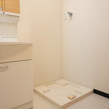 洗濯機は洗面台の隣にあります。