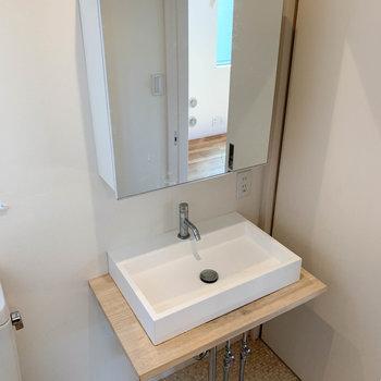 鏡の大きな洗面台。