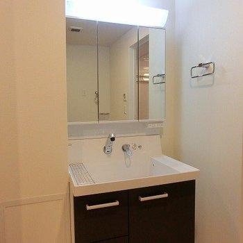 石鹸などの置くスペースも備わったシャワーノズルのある洗面台