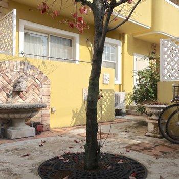 中庭スペースもかわいいの❤︎(※写真は1階の反転間取り別部屋、清掃前のものです)