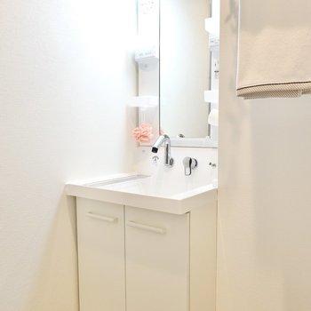 その隣には棚付きの洗面台。シャンプードレッサー仕様で朝の洗髪も楽々。