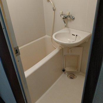 お風呂は2点ユニット。歯磨きはここで。(※写真は2階同間取り別部屋のものです)
