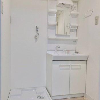 洗面台も洗濯機の防水パンもきれい。