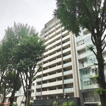 14階建てマンションの4階。