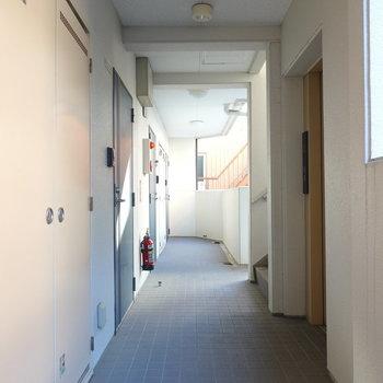 玄関前の共用部もスッキリとしています。