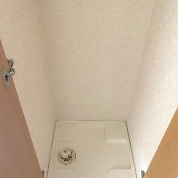 扉を開けると洗濯パンでてきたっ(※写真は7階の同間取り別部屋のものです)