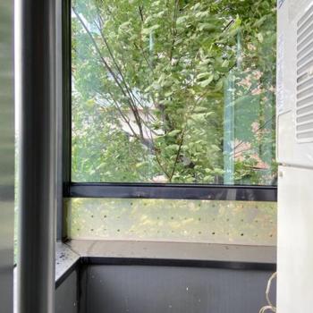 【サニタリー側】同様に窓が設置されています