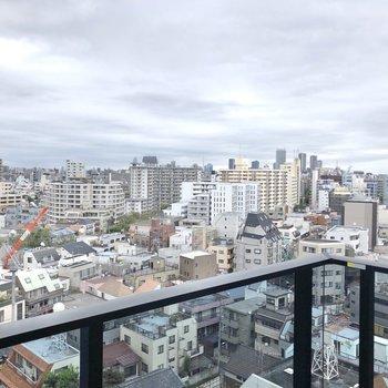 バルコニーからの眺望です。横に壁がなく、開けています。