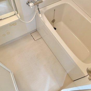 洗い場、浴槽共にゆったりめ。