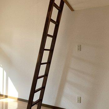 梯子側にコンセントやスイッチが集まっています。