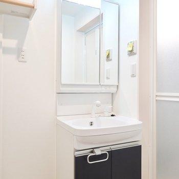 全面が鏡の洗面台で、鏡の裏は収納。シャンプードレッサー仕様なのも嬉しいポイント。
