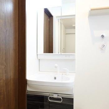 全面が鏡の洗面台で鏡の裏は収納。シャンプードレッサー仕様なのも嬉しいポイント。