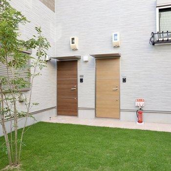 玄関前は緑のある共用部。気分が重くなりがちな朝の出発も、ここならいつもより気分が軽くなりそう!