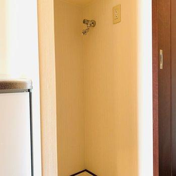 キッチン左側には扉付きの洗濯機置き場。