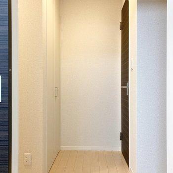 玄関の脇はトイレと収納スペース。
