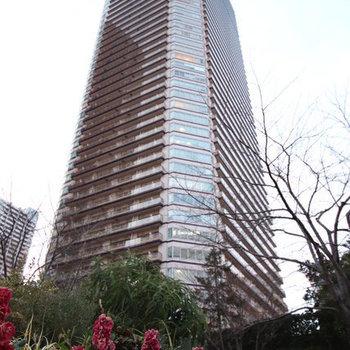 パークシティ武蔵小杉 ステーションフォレストタワー