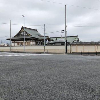バス停の近くには、バス停の名前にもなっている大念寺があります。