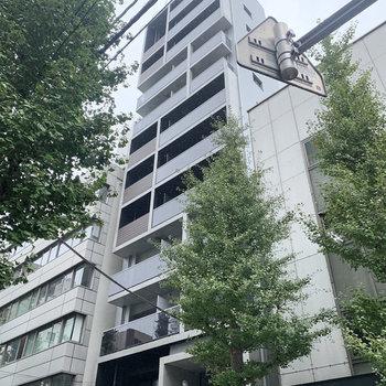 今回のお部屋は、12階建てマンションの8階になります。