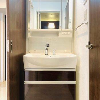 ユーティリティー入って左側には独立洗面所。