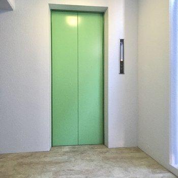 エレベーターは目に優しいグリーン。