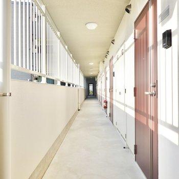 玄関前の共用部も明るい雰囲気。