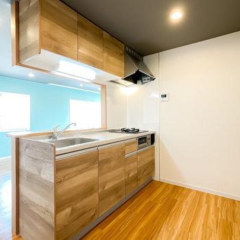 新品のシステムキッチンが導入されています!背面側のスペースもたっぷりと。