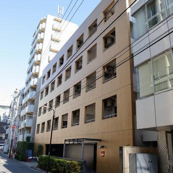 大通りから一本入った通りにある、しっかりとしたマンション。