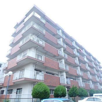 第2グリーンハイツ上野