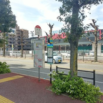 目の前の「中原」バス停。逆側から大橋駅や天神までの直通も出ています。