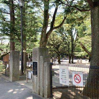 駅までの道には大塚公園が。緑豊かで開放的でしたよ。