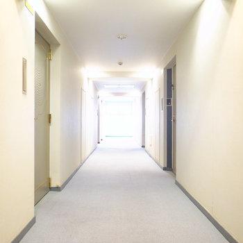 【共用部】完全屋内の廊下です。足元はカーペット、空調が効いていて、お掃除が行き届いています。