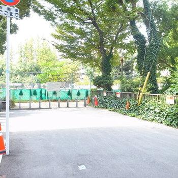 【周辺環境】マンションを出て右へ進むとすぐに「靱公園」なんです!ふらっと気分転換へ繰り出しても◎