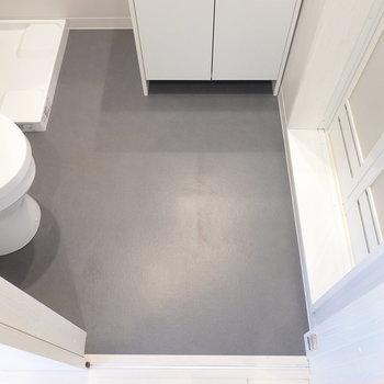 濃いグレーの床も良いですね。一人暮らしにはちょうど良いスペース感です。(※写真は2階の同間取り別部屋のものです)