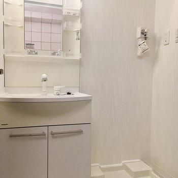 洗面台と洗濯機置き場は脱衣スペースに集結しています。