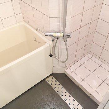 深めの浴槽と、右はシャワースペースかな?