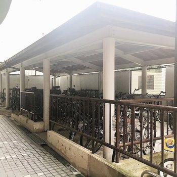 【共有部】駐輪スペースは広めに設けられていました。