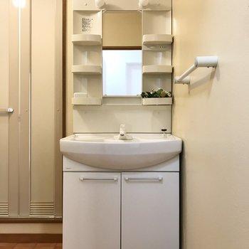 続いて脱衣所。まずは正面に大きな洗面台◯(※写真の小物は見本です)