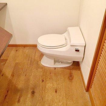 トイレも同室ですがスペースはあります。
