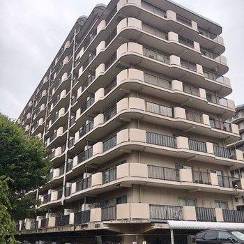 戸数多めの大きなマンションです。