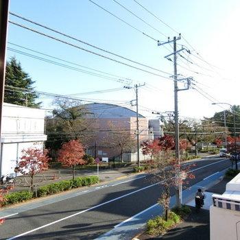 【洋室からの眺望】目の前には道路が通っています。