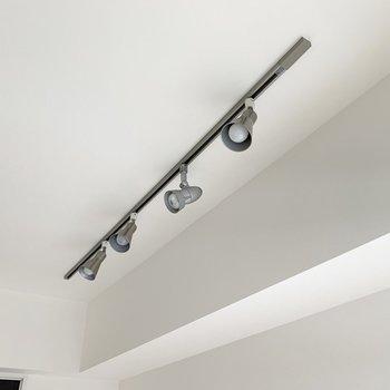 天井のライティングレールとスポットライトが素敵です。(※写真は9階の同間取り別部屋のものです)