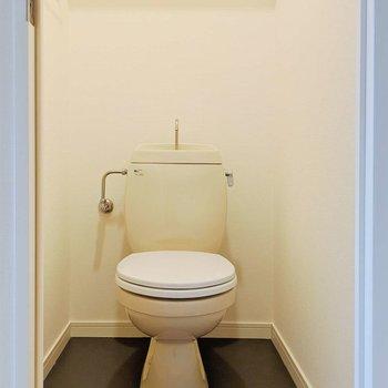 トイレにも棚がついてます、こういうちょっとした心遣いが嬉しいな。