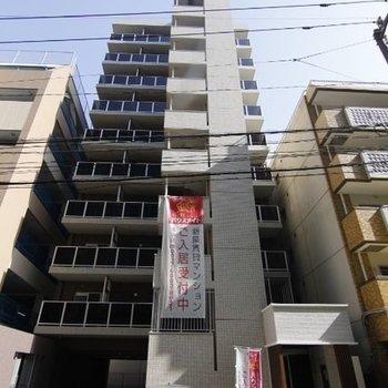 A-style Hakata