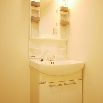 手入れのしやすい独立洗面台(※写真は6階の同間取り別部屋のものです)