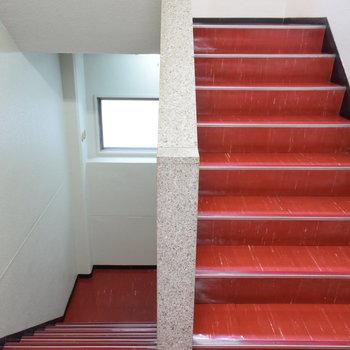 【共用部】真っ赤な階段でお部屋まで