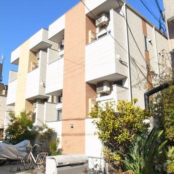 路地にある背の低いアパート。