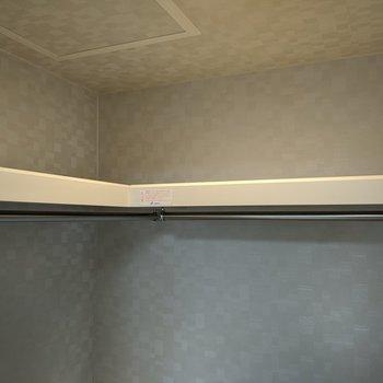 【洋室】上には枕棚とハンガーポールがあります。