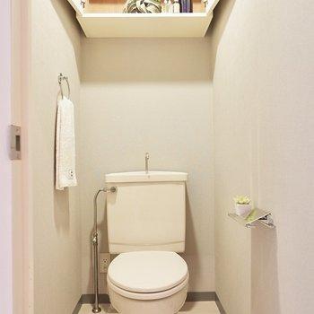 お手洗いはシンプル。上部には収納も。