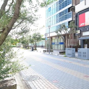 【周辺環境】マンションのある路地を抜けたところ。きれいに舗装された駅までつづく道です。